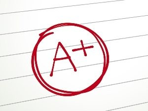 NEW Berkeley County Schools grading scale
