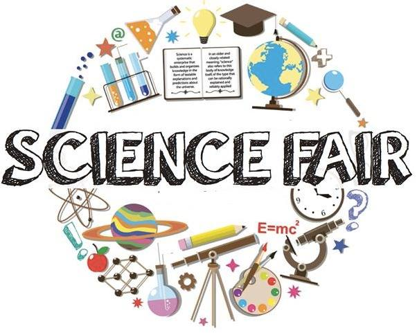 South Students Win 8 Awards at County Science Fair